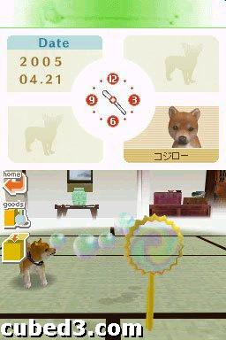 Screenshot for nintendogs on Nintendo DS