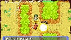 Screenshot for Pokemon Mystery Dungeon: Blue Rescue Team - click to enlarge