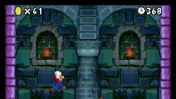 Screenshot for Super Mario Bros DS - click to enlarge