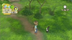 Screenshot for Harvest Moon: Tree Of Tranquility - click to enlarge