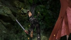 Screenshot for Ninja Gaiden: Dragon Sword - click to enlarge