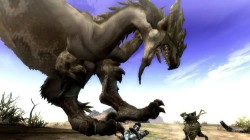Screenshot for Monster Hunter Tri - click to enlarge