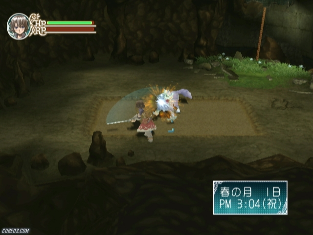 Screenshot for Rune Factory Frontier on Wii- on Nintendo Wii U, 3DS games review
