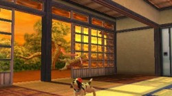 Screenshot for Nintendogs + Cats: Golden Retriever & Friends - click to enlarge