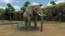 Screenshot for Zoo Resort 3D - click to enlarge