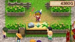 Screenshot for Harvest Moon DS: Grand Bazaar - click to enlarge