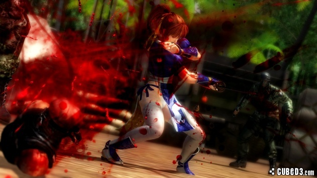 Ninja Gaiden 3 Razor S Edge Wii U Review Page 1 Cubed3