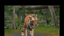 Screenshot for Zoo Resort 3D - click to enlarge