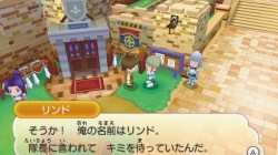 Screenshot for Fantasy Life - click to enlarge