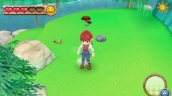 Screenshot for Harvest Moon 3D: A New Beginning - click to enlarge