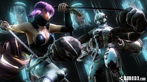 Image for Bloody Ninja Gaiden 3 Trailer Shows New Ayane Gameplay