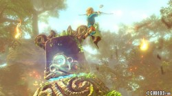 Screenshot for The Legend of Zelda Wii U - click to enlarge