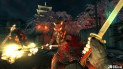 Screenshot for Shadow Warrior - click to enlarge