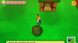 Screenshot for Story of Seasons - click to enlarge