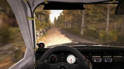 Screenshot for DiRT Rally - click to enlarge