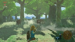 Screenshot for The Legend of Zelda: Breath of the Wild - click to enlarge