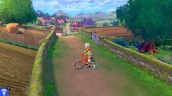 Screenshot for Pokémon Sword - click to enlarge
