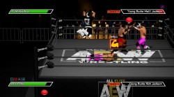 Screenshot for Chikara: Action Arcade Wrestling - click to enlarge