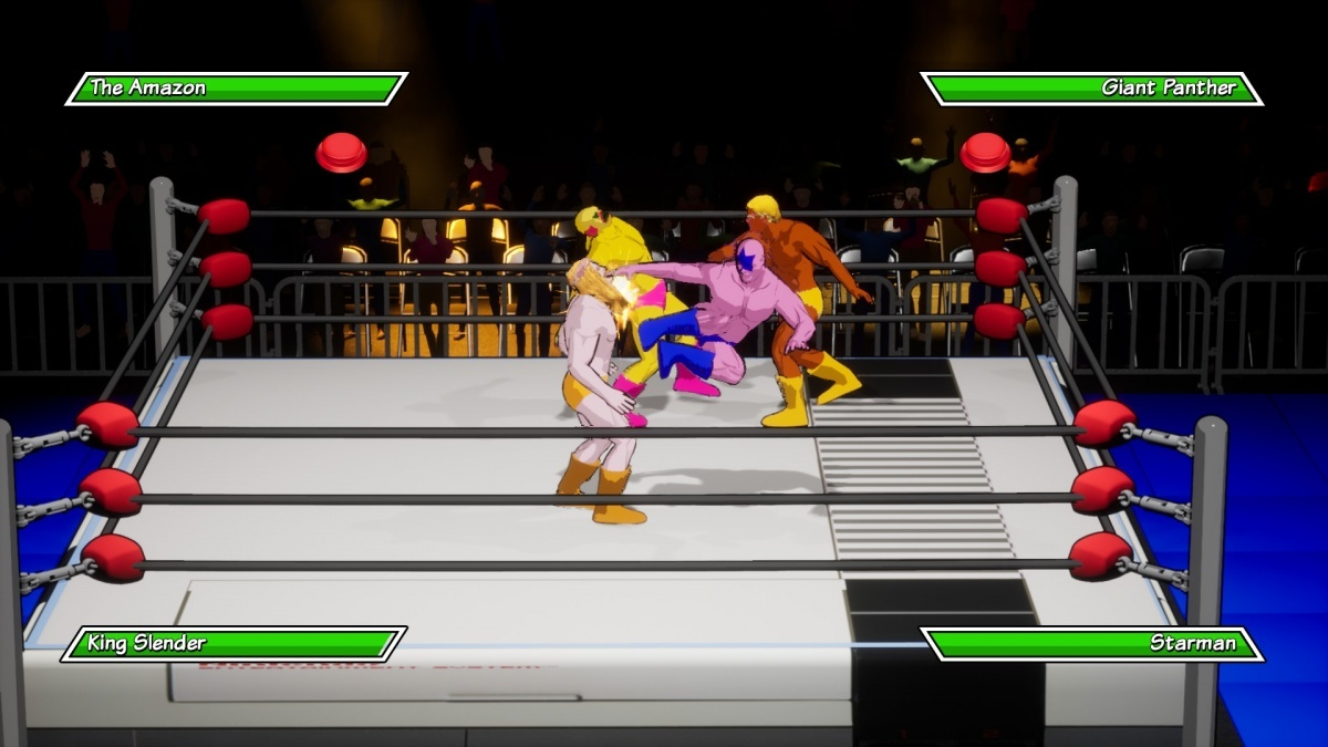 Screenshot for Chikara: Action Arcade Wrestling on PC
