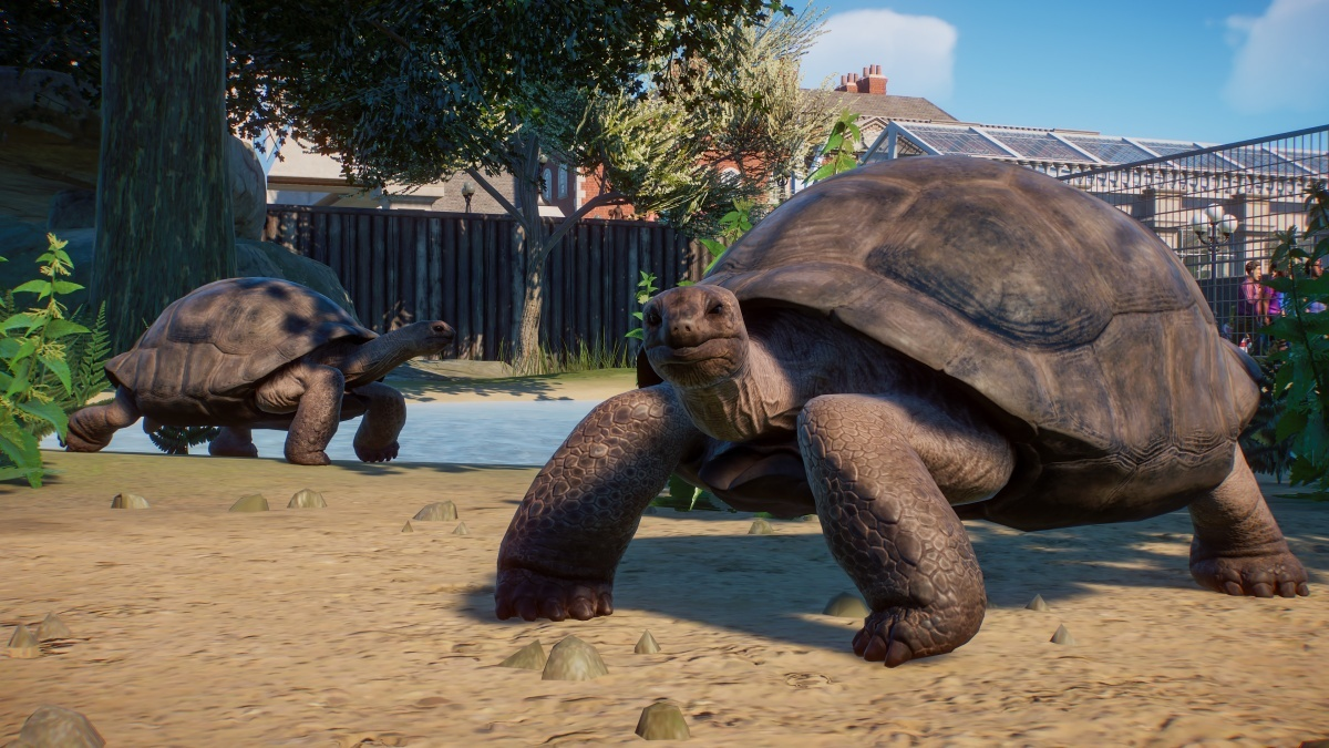 Screenshot for Planet Zoo on PC
