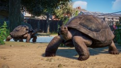 Screenshot for Planet Zoo - click to enlarge