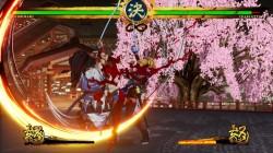 Screenshot for Samurai Shodown - click to enlarge