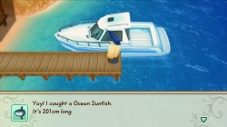 Screenshot for Story of Seasons:  Friends of Mineral Town  - click to enlarge