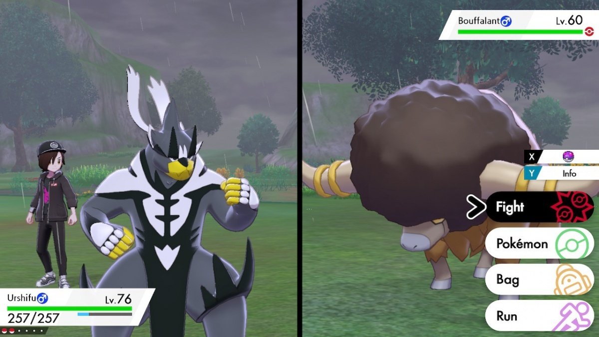 Screenshot for Pokémon Sword / Shield: The Isle of Armor on Nintendo Switch