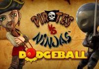 Review for Pirates VS Ninjas Dodgeball on Wii