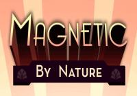 Review for Magnetic By Nature on PC