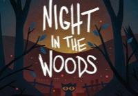 Read review for Night in the Woods - Nintendo 3DS Wii U Gaming