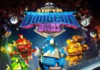 Read review for Super Dungeon Bros. - Nintendo 3DS Wii U Gaming