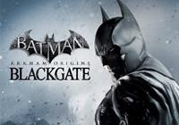 Read review for Batman: Arkham Origins Blackgate - Nintendo 3DS Wii U Gaming