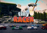 Read Review: Tiny Racer (Nintendo Switch) - Nintendo 3DS Wii U Gaming