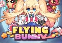 Read review for Flying Bunny - Nintendo 3DS Wii U Gaming