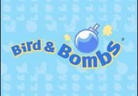 Review for Bird & Bombs on DSiWare - on Nintendo Wii U, 3DS games review