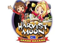 Review for Harvest Moon DS: Grand Bazaar on Nintendo DS - on Nintendo Wii U, 3DS games review