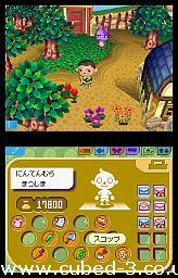 Screenshot for Animal Crossing: Wild World on Nintendo DS - on Nintendo Wii U, 3DS games review
