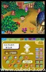 Screenshot for Animal Crossing DS - click to enlarge